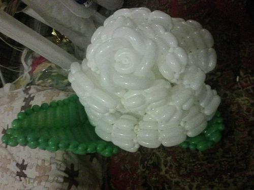 Фото для Белая роза.